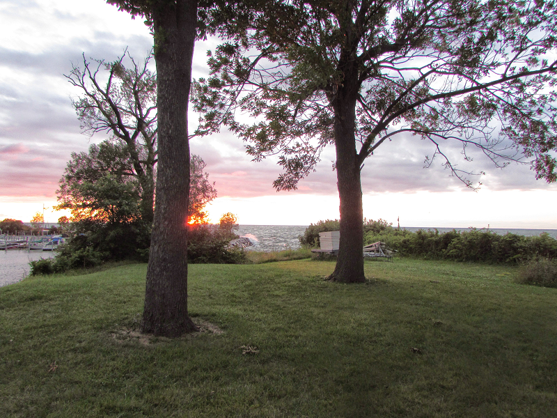 sunset on lake erie shore cleveland ohio with trees taken by nancy gurish