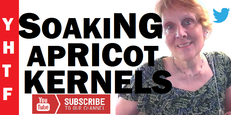 thumbnail image of a video of Nancy Gurish's titled Soaking And Chewing Apricot Kernels